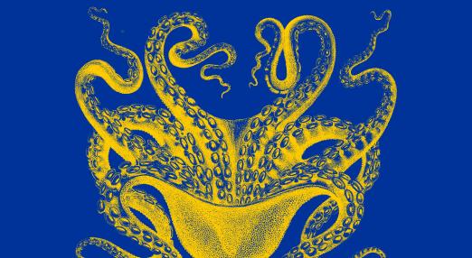 EU octopus